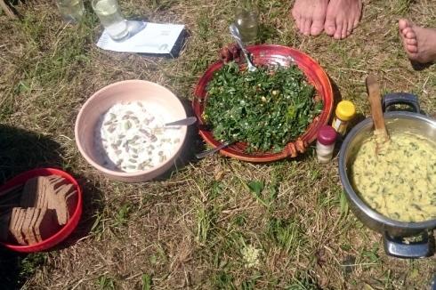 Divja kulinarika-- fera cibum (12)