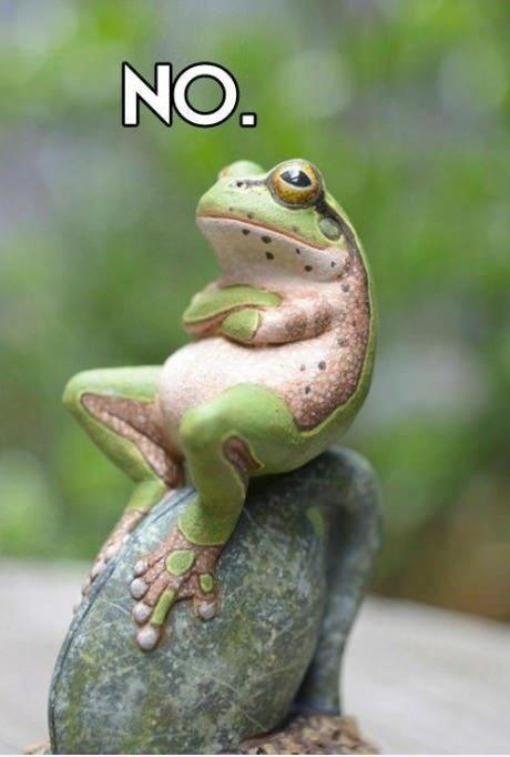 a-non-frog